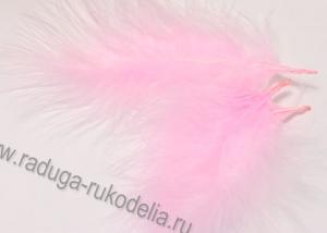 Перо розовое (5-10 см)