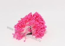 Тычинки ярко-розовые , пучок (около 100 нитей)