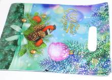 Пакет подарочный Снегирь 20х30 см