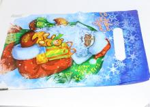 Пакет подарочный Дед Мороз 20х30 см